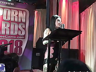 Alt Porn Awards 2018 - Opening And First Award